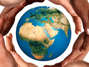 Non Profits and NGO Service support